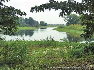 Landschaft auf Majuli